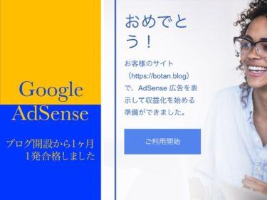 Google  AdSense 知識ゼロの僕がブログ開設から6記事で合格した方法